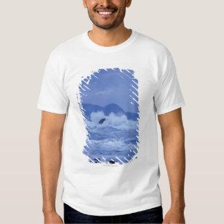 rough seas crashing against a rocky shore tshirts