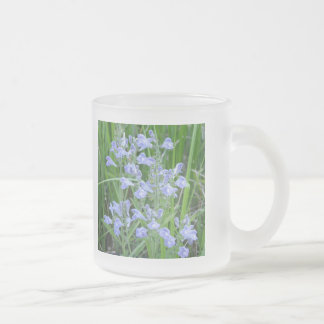 Rough Skullcap, Scutellaria integrifolia Frosted Glass Coffee Mug