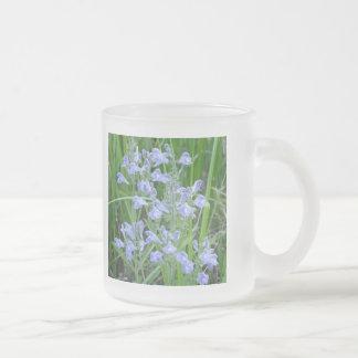 Rough Skullcap, Scutellaria integrifolia 10 Oz Frosted Glass Coffee Mug