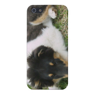 Rough Tri Collie Puppy iPhone SE/5/5s Case