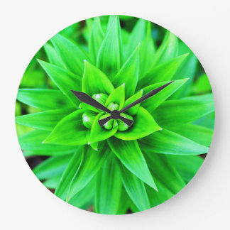 Round clock with a green succulent design.