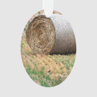 Round Hay Bale in Field