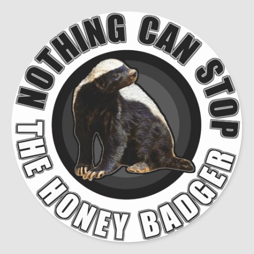 Round Nothing Can STOP the Honey Badger Design Round Stickers