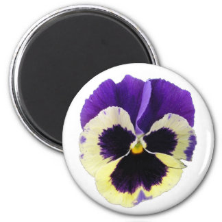 Round Purple and Yellow Pansy Magnet