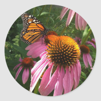 Round stickers - Monarch Butterfly and Coneflowers