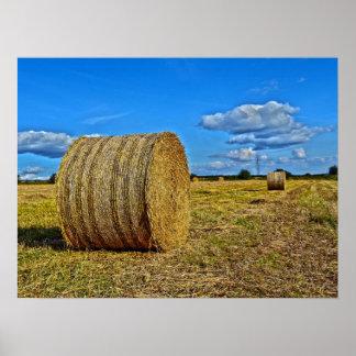 Round Straw Bales Poster