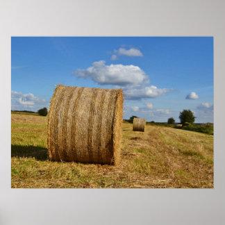 Round Straw Bales Poster 2