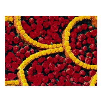 Rounded drops of red roses and yellow flowers postcard