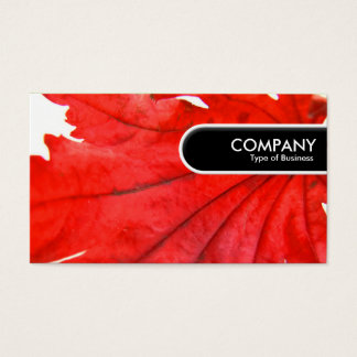 Rounded Edge Tag - Japanese Maple Leaf