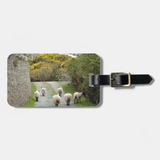 Roundstone Rush Hour Luggage Tag
