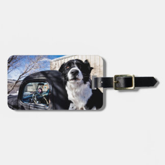 Route 66 - 2 bag tag