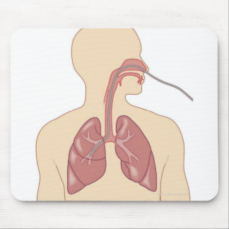 Route of Bronchoscope Mouse Pad