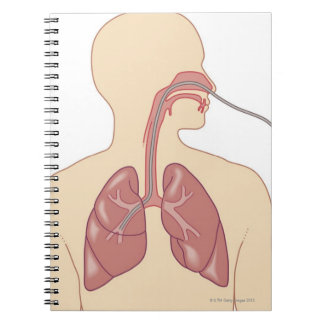 Route of Bronchoscope Notebook