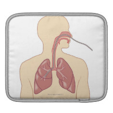 Route Of Bronchoscope Sleeve For Ipads at Zazzle