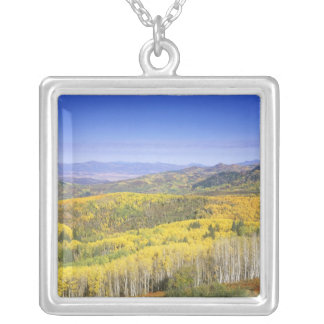 Routt National Forest in Autumn color, near Square Pendant Necklace