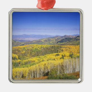 Routt National Forest in Autumn color, near Square Metal Christmas Ornament