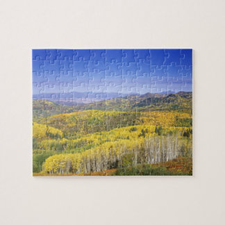 Routt National Forest in Autumn color, near Jigsaw Puzzle