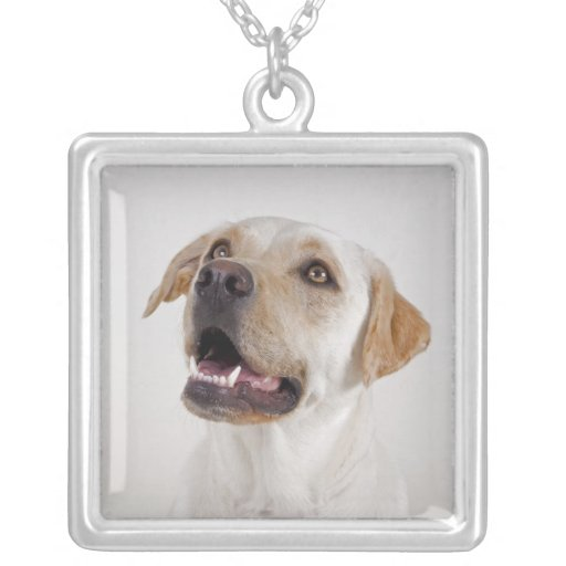 Rover Necklace
