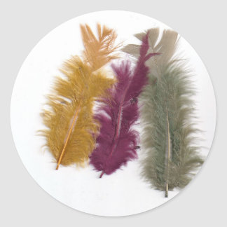 row of colourful feathers classic round sticker