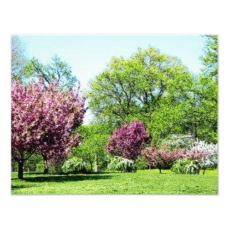 "Row of Flowering Trees 4.25"" X 5.5"" Invitation Card"