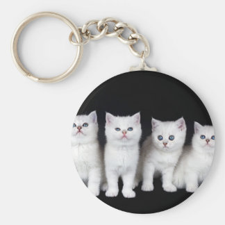 Row of four white kittens on black background.JPG Keychain