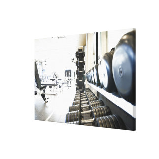 Row of free weights in foreground and exercise canvas print