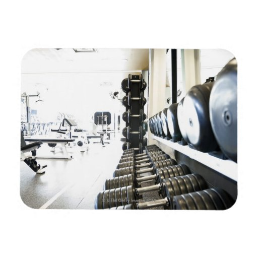 Row of free weights in foreground and exercise rectangular magnet