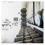 Row of free weights in foreground and exercise ceramic tiles