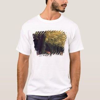 Row of Ginkgo Trees T-Shirt