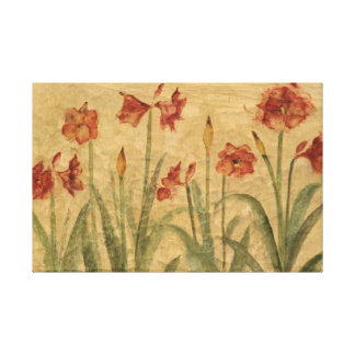 Row of Red Amaryllis Canvas Print