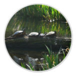Row of Turtles Green Nature Photo Ceramic Knob