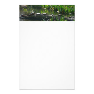 Row of Turtles Green Nature Photo Stationery