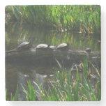 Row of Turtles Green Nature Photo Stone Coaster