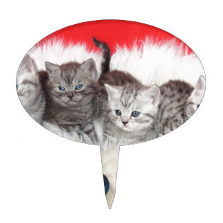 Row young tabby cats on sheep skin with christmas cake topper
