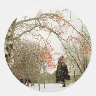 Rowan berries against the snow stickers
