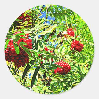 Rowan berries sticker