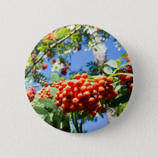 Rowan Button