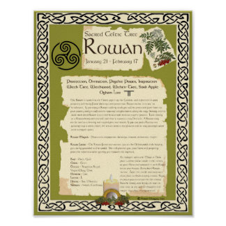 ROWAN CELTIC SACRED TREE POSTER