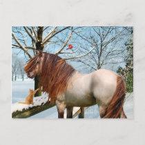 """Rowan"" Postcard"