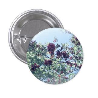 Rowan Sky Pinback Button