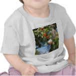 Rowan T Shirts