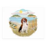 Rowboat - Beagle 4 Postcard