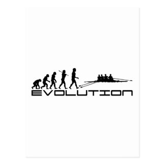 Rowing Rower Water Sport Evolution Art Postcard
