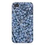 Rows of blueberries cases for iPhone 4