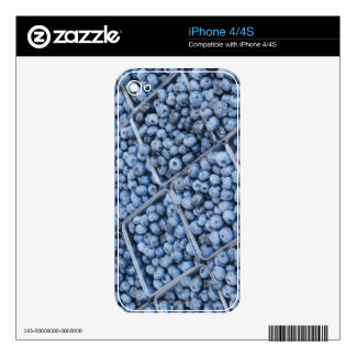 Rows of blueberries iPhone 4 decal