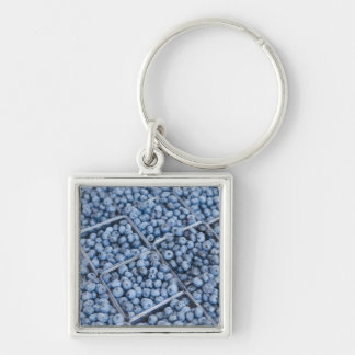 Rows of blueberries keychain
