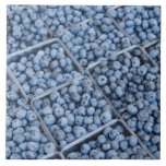 Rows of blueberries large square tile