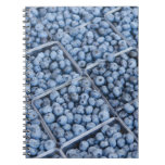Rows of blueberries notebooks