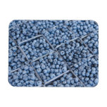 Rows of blueberries rectangle magnets