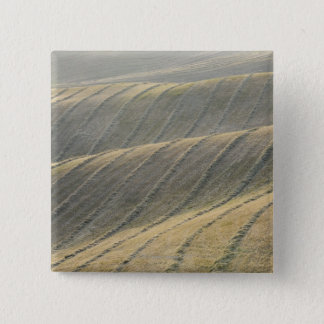 Rows of Harvested Wheat Field, Val d'Orcia, Pinback Button